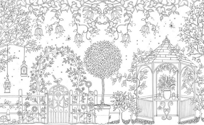 An Inky Secret Garden Hunt And Coloring Book
