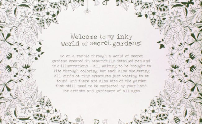 Coloring-Book-Secret-Garden-Treasure-Hunt-and-An-Inky