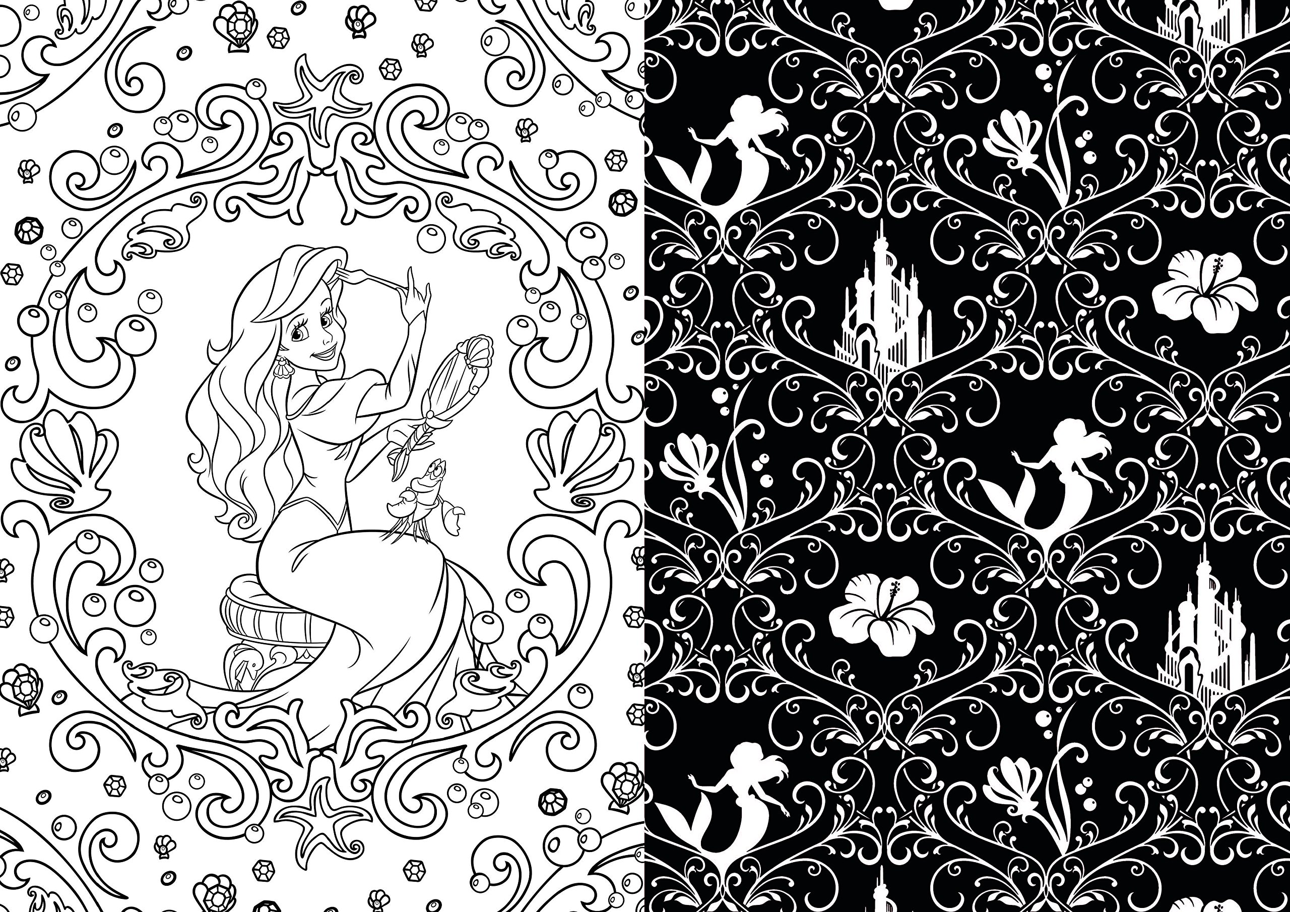 Art of Coloring Disney Princess: 100 Images to Inspire Creativity ...