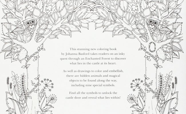Enchanted Forest Coloring Book An Inky Quest