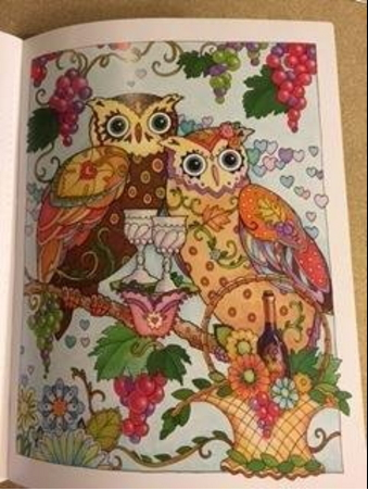 Owls birds coloring pages for adults