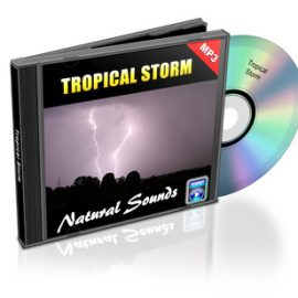 Tropical Storm – Natural Sounds of Rain