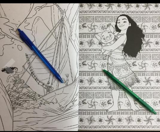 Disney Moana adult coloring book