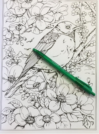 Birds, nature and garden scenes for adult coloring