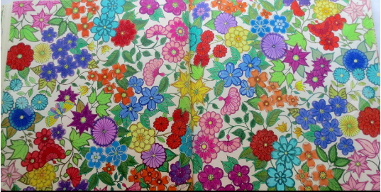 Floral pattern coloring book pages for adults