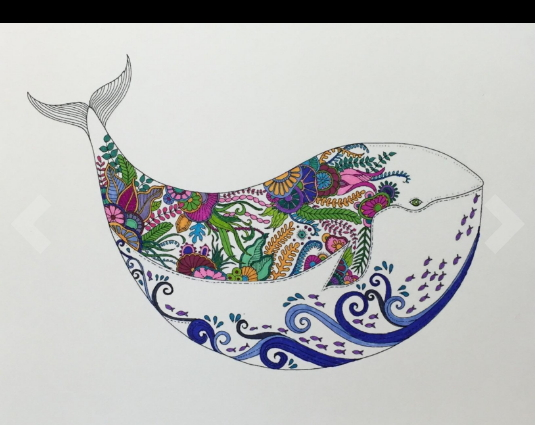 whale fish ocean adult coloring pages