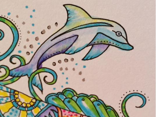 Porpoise dolphin adult coloring pages