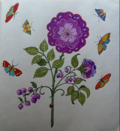 Johanna Basford Secret Garden Adult Coloring Book