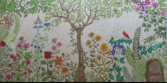 Garden coloring book for adults