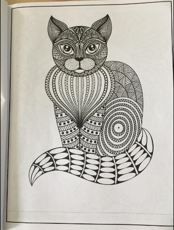anti stress coloring book with beautiful kitties