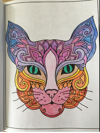stylish cat coloring pages for adults