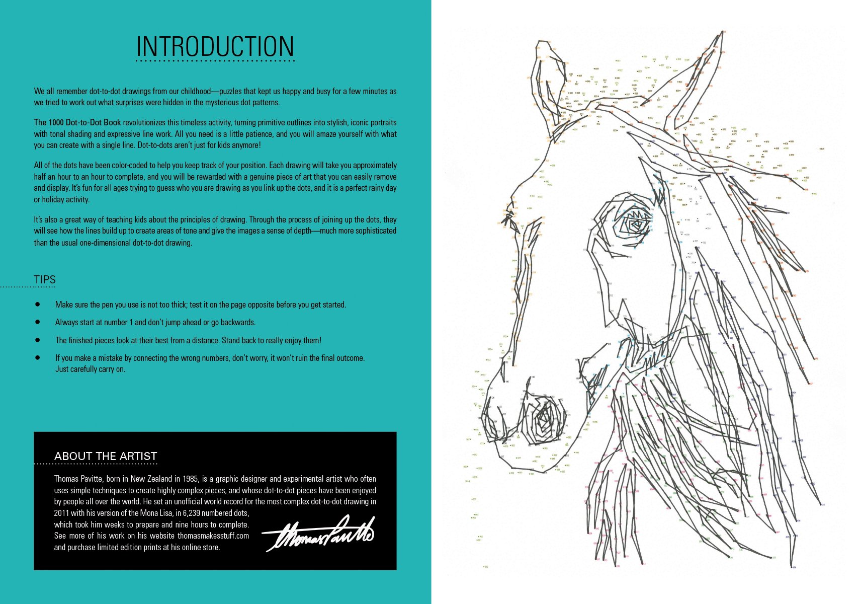 1000 Dot-to-Dot: Animals - Adult Coloring Book Club